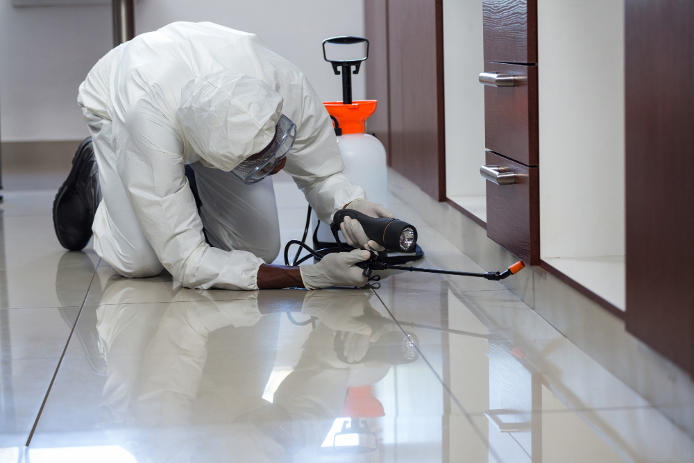 How to choose a Pest Management company